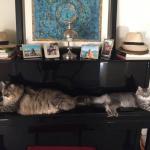 Marlowe et Orah chez Heather
