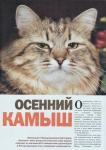 kamysh-magazine-1
