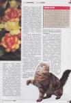 kamysh-magazine-2