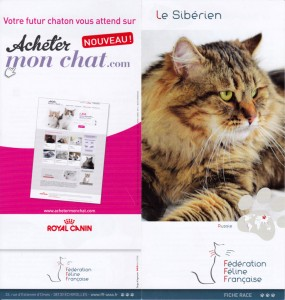 FFF-leaflet-with-irvin-01