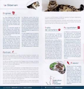 FFF-leaflet-with-irvin-02-1